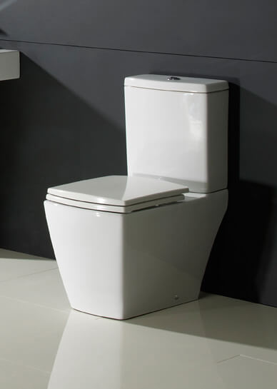 Deisgner Close Coupled WC
